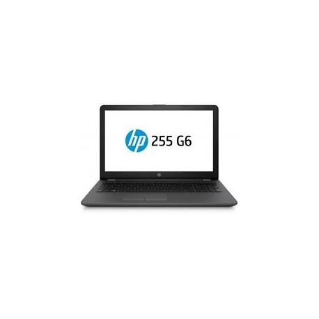 HP Ordinateur portable 255 G6